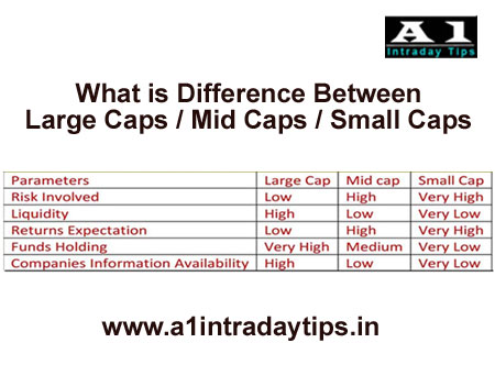Difference Between Market capitalization